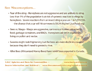 BeeFacts-2